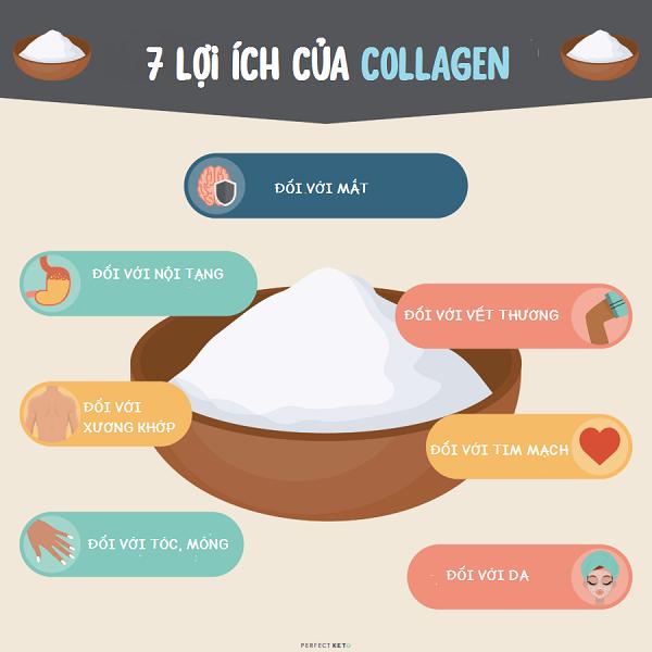 7 lợi ích của collagen đối với cơ thể